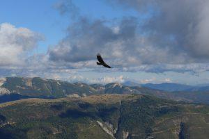 St Andre les Alpes -aeroglisse